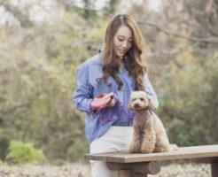 公園でペットのトイプードルと一緒に散歩する動物好きの女性